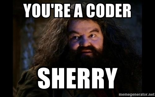 Yer A Wizard Harry Hagrid - You're a coder sherry