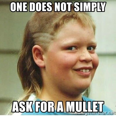 Jonnen Neuvo - oNE DOES NOT SIMPLY  ASK FOR A MULLET