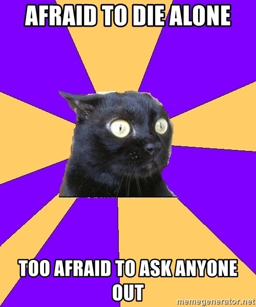Anxiety Cat - Afraid to die alone Too afraid to ask anyone out