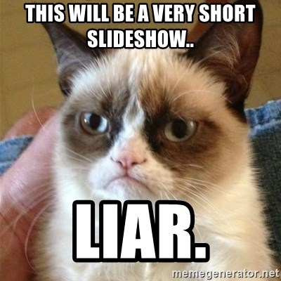 Grumpy Cat  - This will be a very short slideshow.. Liar.