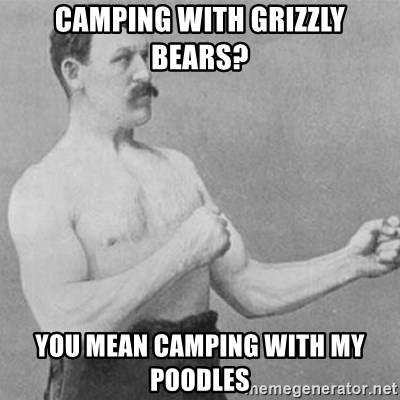overly manly man - Camping with grizzly bears? You mean camping with my poodles