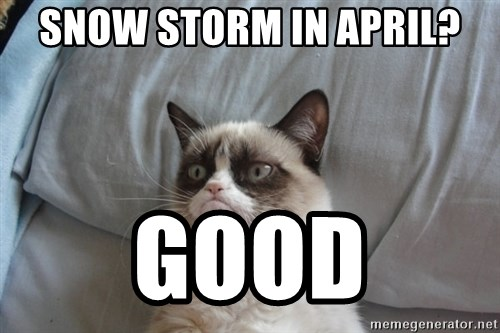 Grumpy cat 5 - snow storm in april? Good