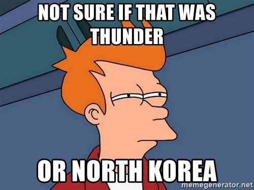 Futurama Fry - Not sure if that was thunder or north korea