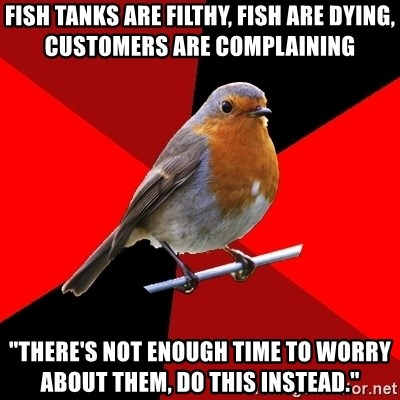 """Retail Robin - fish tanks are filthy, fish are dying, customers are complaining """"There's not enough time to worry about them, do this instead."""""""