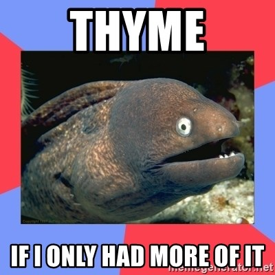 Bad Joke Eels - THYME IF I ONLY HAD MORE OF IT