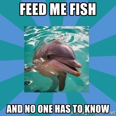 Dyscalculic Dolphin - Feed me fish and no one has to know
