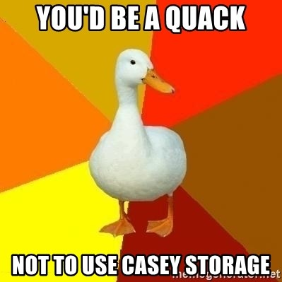 Technologically Impaired Duck - you'd be a quack not to use casey storage