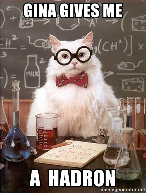 Science Cat - Gina gives me A  hadron