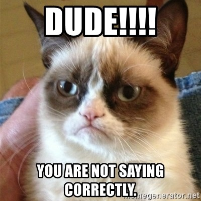 Grumpy Cat  - DUDE!!!! You are not saying correctly.