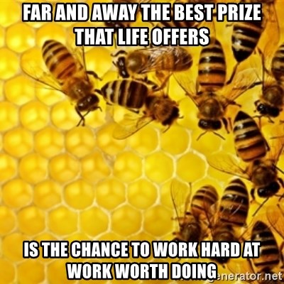 Honeybees - Far and Away the best prize that life offers Is the chance to work hard at work worth doing