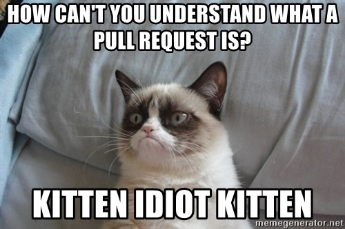Grumpy cat 5 - How can't you understand what a pull request is? Kitten IDIot Kitten