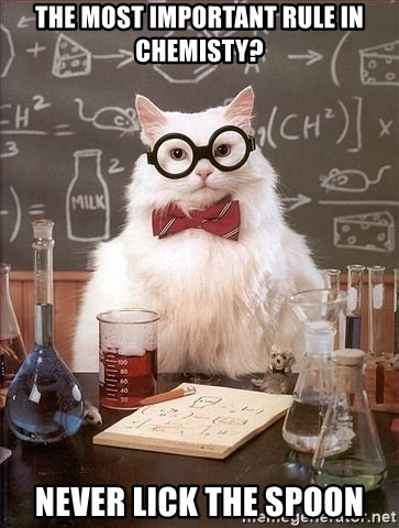 Chemistry Cat - the most important rule in chemisty? never lick the spoon