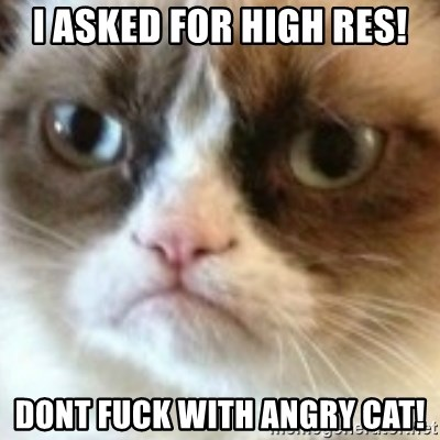 angry cat asshole - I ASKED FOR HIGH RES! DONT FUCK WITH ANGRY CAT!