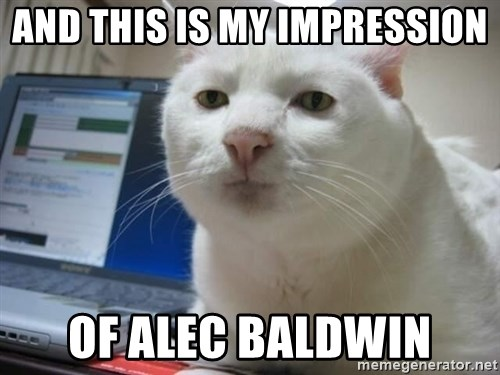 Serious Cat - and this is my impression of Alec Baldwin