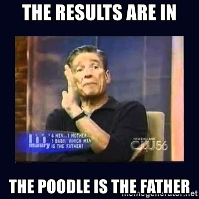 Maury Povich Father - THE RESULTS ARE IN THE POODLE IS THE FATHER