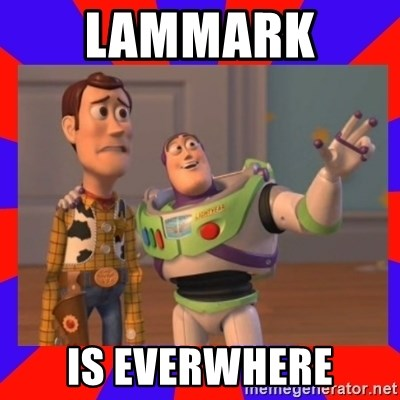 Everywhere - Lammark  is everwhere