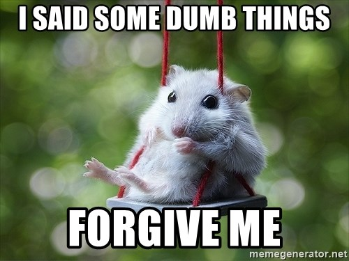 Sorry I'm not Sorry - i said some dumb things Forgive me