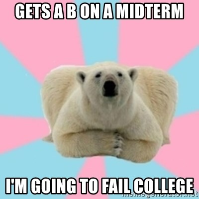 Perfection Polar Bear - Gets a b on a midterm i'm going to fail college