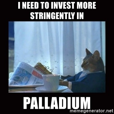 i should buy a boat cat - I NEED TO INVEST MORE STRINGENTLY IN PALLADIUM