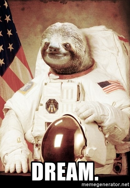 space sloth -  dream.