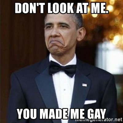 Not Bad Obama - Don't look at me. You made me Gay