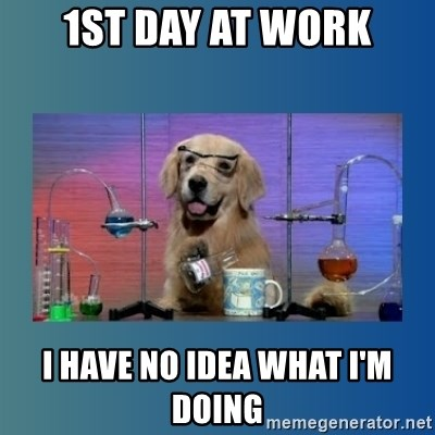 Chemistry Dog - 1st day at work i have no idea what i'm doing