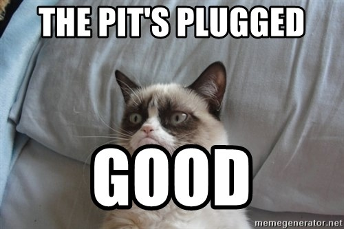 Grumpy cat 5 - the pit's plugged good