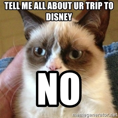 Grumpy Cat  - tell me all about ur trip to disney no