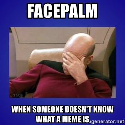 Picard facepalm  - facepalm WHEN SOMEONE DOESN'T KNOW what a meme is