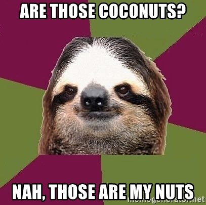 Just-Lazy-Sloth - Are those Coconuts? Nah, Those are my nuts