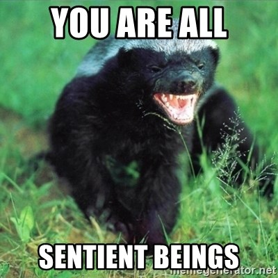 Honey Badger Actual - You are all Sentient beings