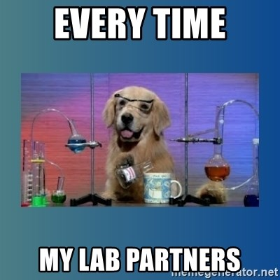 Chemistry Dog - Every time my lab partners