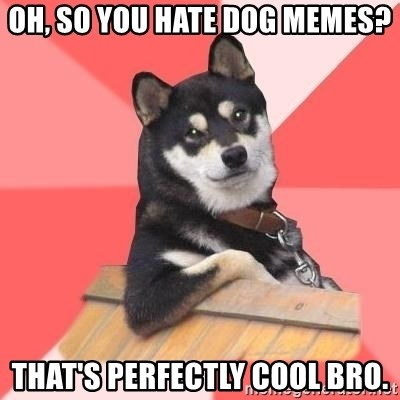 Cool Dog - oh, so you hate dog memes? that's perfectly cool bro.