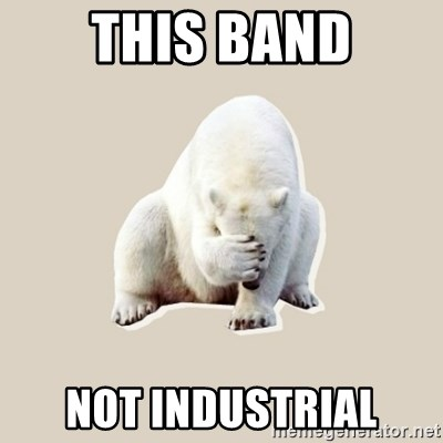Bad RPer Polar Bear - this band not industrial