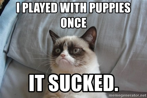 Grumpy cat good - I pLayeD with puPpies once It sucked.