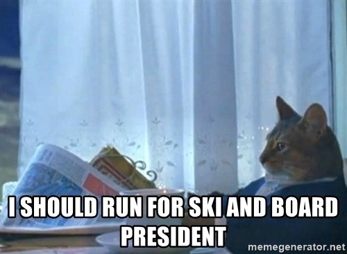 Sophisticated Cat -  I should run for ski and board president