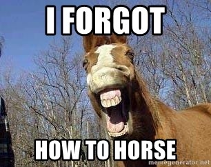 Horse - I FORGOT HOW TO HORSE