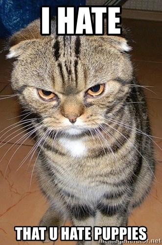 angry cat 2 - I HATE that U HATE PUPPIES