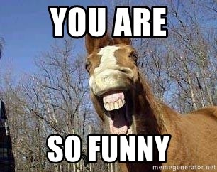 Horse - you are so Funny