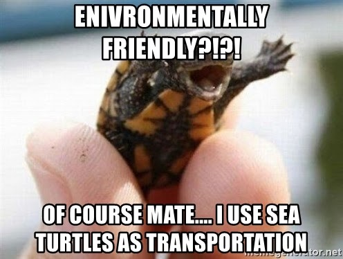 angry turtle - Enivronmentally friendly?!?! Of course mate.... I use sea turtles as transportation