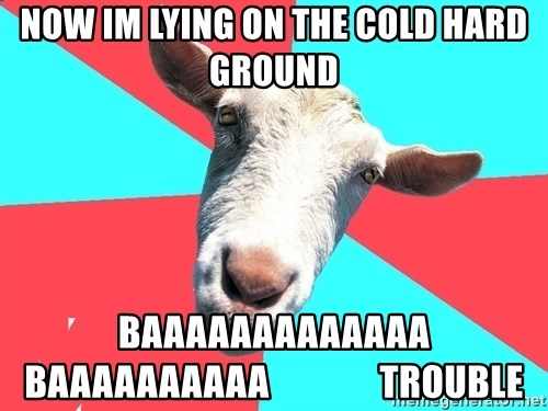Oblivious Activist Goat - now im lying on the cold hard ground BAAAAAAAAAAAAA  baaaaaaaaaa               trouble