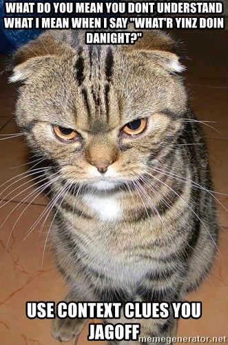 """angry cat 2 - what do you mean you dont understand what I mean when i say """"what'r yinz doin danight?"""" use context clues you jagoff"""