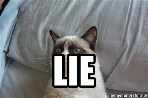 Grumpy cat good -  Lie