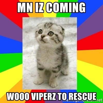 Cute Kitten - MN iz coming wooo viperz to rescue