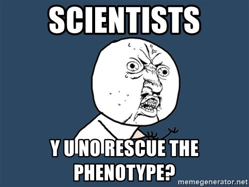 Y U No - scientists y u no rescue the phenotype?