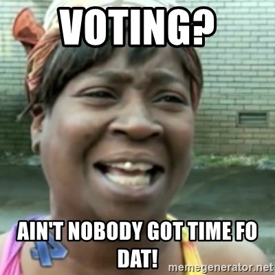 Ain't nobody got time fo dat so - Voting?  Ain't nobody got time fo dat!