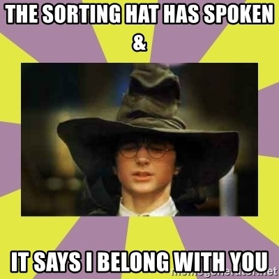 Harry Potter Sorting Hat - the sorting hat has spoken &  It Says I belong with you