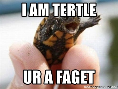 angry turtle - i am tertle ur a faget