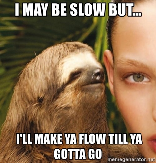 The Rape Sloth - i may be slow but...  i'll make ya flow till ya gotta go
