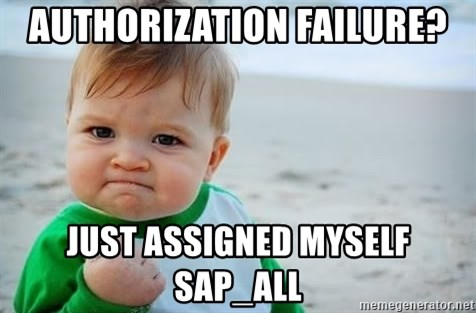 fist pump baby - Authorization Failure? Just assigned myself SAP_ALL